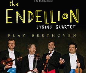 Beethoven DVDs